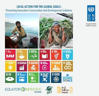 Local action for global goals2